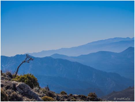 Vida nómada digital en Granada