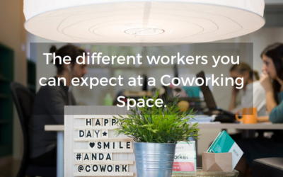 Who can we find at a coworking space?